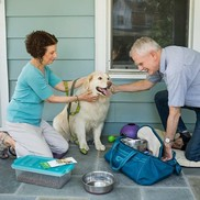Prepare Your Pets for Disasters
